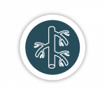 Vascular Access Icon